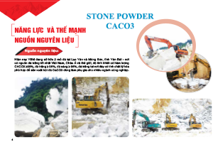 TOP APEC SUPPLY STONE POWDER CACO3